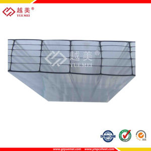 Lexan Multiwall Polycarbonate Sheet PC Sheet/Double Layer Polycarbonate Sheet pictures & photos