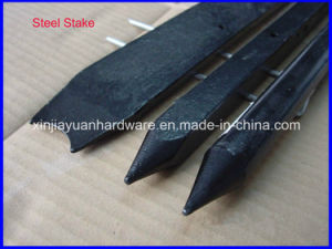 Round, Square Flat and I Beam Nail Stake for Construction pictures & photos