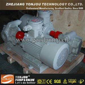 Hot Sale High Quality KCB Gear Pump, Hydraulic Gear Pump, Gear Pump Kit pictures & photos