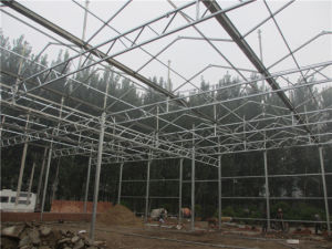 Hot Sale Quality Galvanized Steel Skeleton for Multi Span Greenhouse