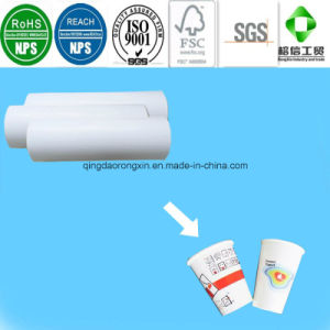 PE Coated Paper for Cold Drinking Shop Cup pictures & photos
