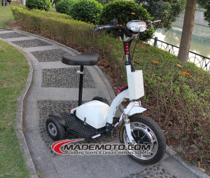 Mobility Scooter (ES5013) pictures & photos