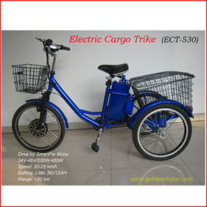 Electric Trike Cargo Tricycle with Brushless Hub Motor pictures & photos