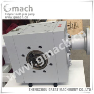 Plastic Extrusion Melt Gear Pump for Plastic Sheet Extruder pictures & photos