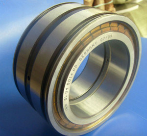 SL045014PP High Precision Double Row Cylindrical Roller Bearings Full Complement Bearings pictures & photos