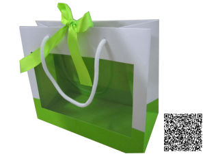 Paper Gift Bag /Craft Bags/Shopping Bags (mx-018) pictures & photos