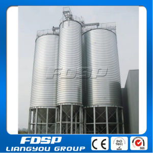 High Strength Steel Structure Building Silo pictures & photos