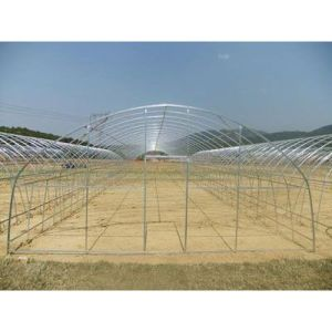 Hot Sale Quality Galvanized Steel Skeleton for Multi Span Greenhouse pictures & photos