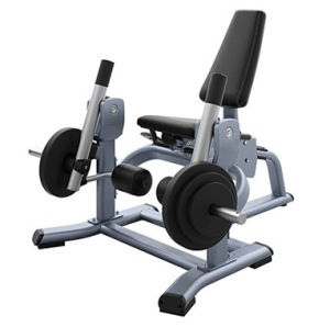 Precor Gym Equipment Leg Extension (SE07) pictures & photos