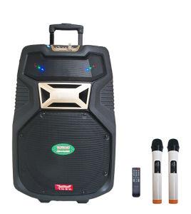 Active Speakers/PA Speaker/Plastic Speaker Box (F38) pictures & photos