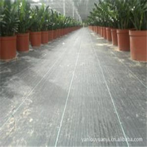 We Manufacture The Weed Block Fabric /Weed Control Fabric pictures & photos