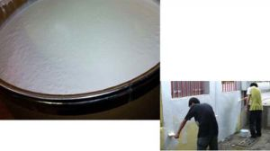 Pure Acrylic Emulsion for Architecture Coating