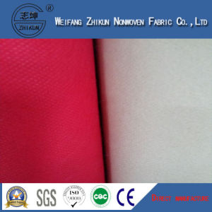 Popypropylene Spunbond Nonwoven Fabric to Be Used Different Country pictures & photos