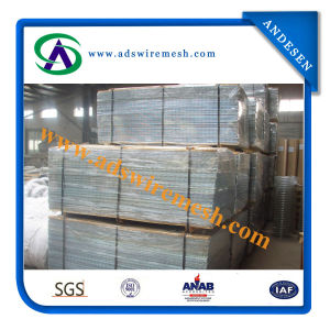 China Wholesale Professional Manufacture Galvanized Welded Wire Mesh pictures & photos