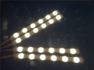 DC12V IP68 60LEDs/Meter LED Strip Light with Rubber Tube pictures & photos