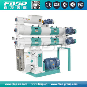 Fish Feed Pellet Machinery Manufacturer pictures & photos