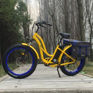 48V 500W Fat Tire Electric Bike for Woman pictures & photos