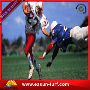 Free Samples Football Artificial Grass Synthetic Grass for Sport pictures & photos