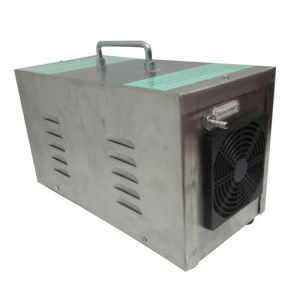 Rh-319 Portable Ozone Generator for Industrial Use 7g/H pictures & photos