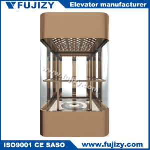 Small Elevator with Glass Door for Home pictures & photos
