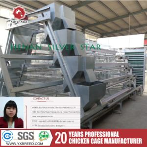 Quail Farming/Poultry Farms/Chicken Machinery (A4L120) pictures & photos