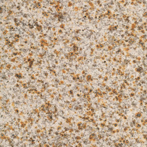G603 G682 G664 G684 G687 Granite Slab Granite Tile Granite Countertop pictures & photos