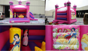 Commercial Bounce House / Bounce House Blower / Princess Bounce House pictures & photos