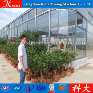 Small Agricultural Greenhouse for Sale pictures & photos