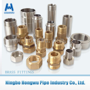 Inox Tube Fitting Stainless Steel Nut