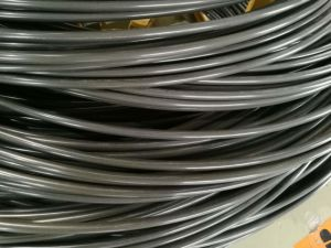 Pasaip Finished Wire Ml20mntib for Making Fasteners pictures & photos