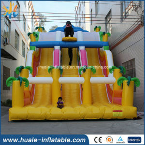 Wholesale Inflatable Water Slide for Amusement Park, Water Sport Inflatables for Sale pictures & photos