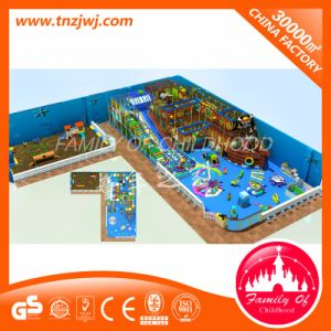 LLDPE Children Indoor Playground Labyrinth Playground pictures & photos