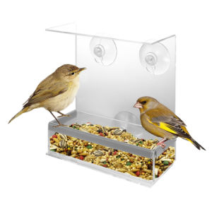 Clear Glass Window Acrylic Bird Feeder Fat pictures & photos