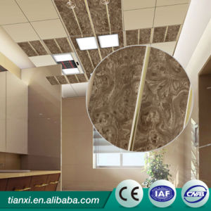 Sound-Absorbing and Fireproof 60X60 PVC Panel for Walls and Ceiling pictures & photos