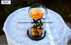Preserved Fresh Flower Wedding Gift pictures & photos
