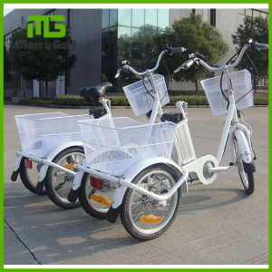 China Good Quality 3 Wheel Electric Cargo Motor Tricycle pictures & photos
