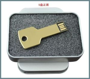Metal Car Key Custom Laser Company Logo USB 2.0 Memory Flash Pen Drive pictures & photos