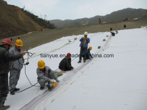 High Quality Filament Singeing Geotextile pictures & photos