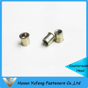 Reduced Head Rivet Nut with Knurled/Round Body pictures & photos