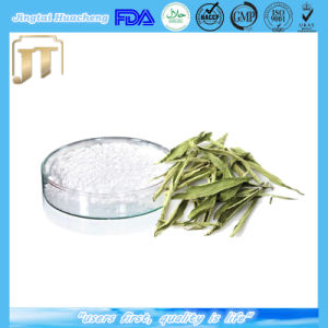 Bulk Pure Stevia Extract/Steviol Glycoside 80%- 95% pictures & photos