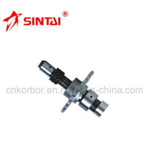 High Quality Camshaft for Benz M102 1020505501 pictures & photos