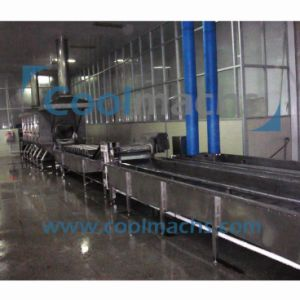 Food Processing Equipment/Vegetable Fruit Processing Line pictures & photos