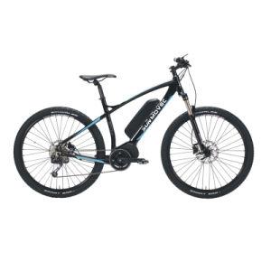 Big Size electric Bike Ebike E-Bike pictures & photos