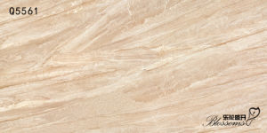 Semi-Polished Interior & Exterior Wall and Floor Porcelain Thin Tile (600X1200X5.0) pictures & photos