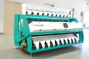 High Quality with Low Price Used CCD Barley Rice Color Sorter/Sorting Machine Made in China pictures & photos