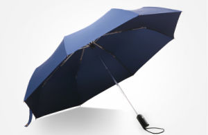 10k Tri-Folded Umbrella pictures & photos