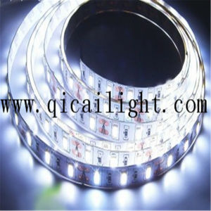 Super Bright High Energy-Saving 84LED/M 0.2W 2835 SMD Flexible LED Strip pictures & photos