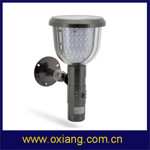 Solar PIR Sensor Light Camera Home Securty PIR Camera pictures & photos