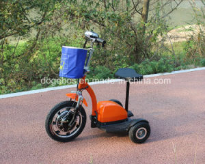 China Supplier Electric Driving Type Adult Electric Tricycle pictures & photos