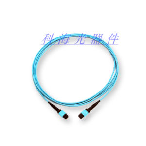 Fiber Optic MPO Patch Cord pictures & photos